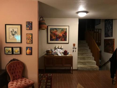 All Things Great and Small in collectors home